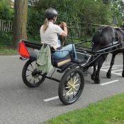 Tweewieler/ Sulky voor klein paard of e-pony