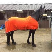 QHP Zweetdeken oranje