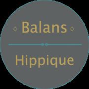Te Koop: 2 E-tickets voor balans Hippique in Exloo