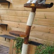 Natuurlijke  houten krabpaal