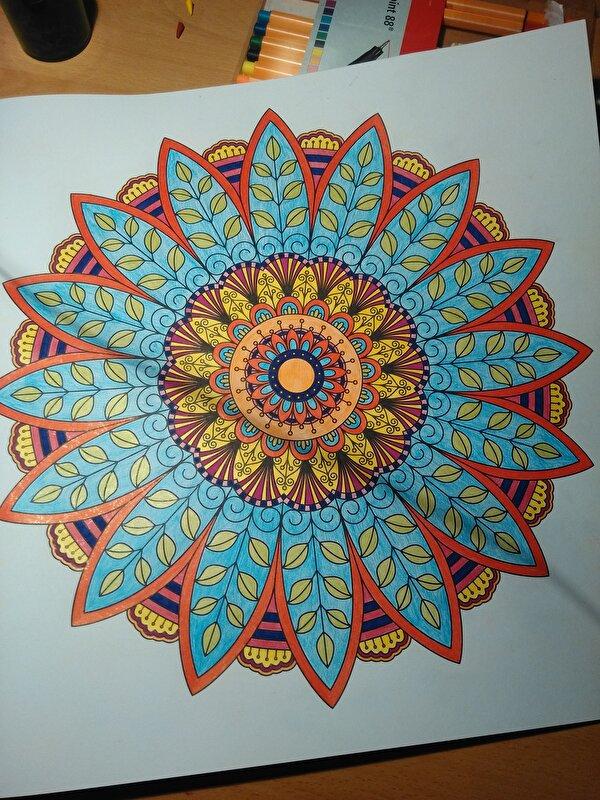 Kleurplaten Volwassenen Ingekleurd.Info Kleurboek Voor Volwassenen Doe Jij Ook Mee Bokt Nl
