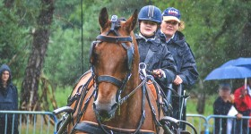Dag van het paard Park Hoge Veluwe
