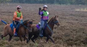 Comeback voor Dushi @ Endurance Epe 46 km met 50 paarden