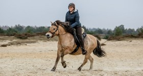 Tweede Autumn Desert Trail met fjord Winnie