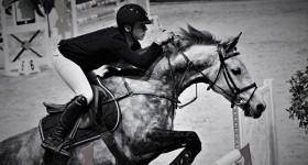 Flanders Horse Expo Foto's