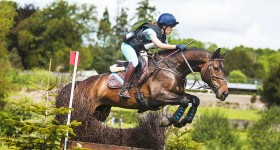 Eventing Arville *CNC*