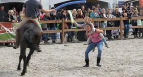 horse event foto's