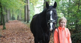 Mijn Black Beauty...