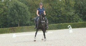 Kings Cadanza (a.k.a. Daan) Horka Trainingsdag op KNHS