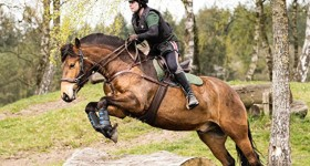 (Bitloos) crossen