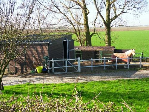 Te huur huis met paardenstal en paddock west brabant for Huis met paardenstallen te koop