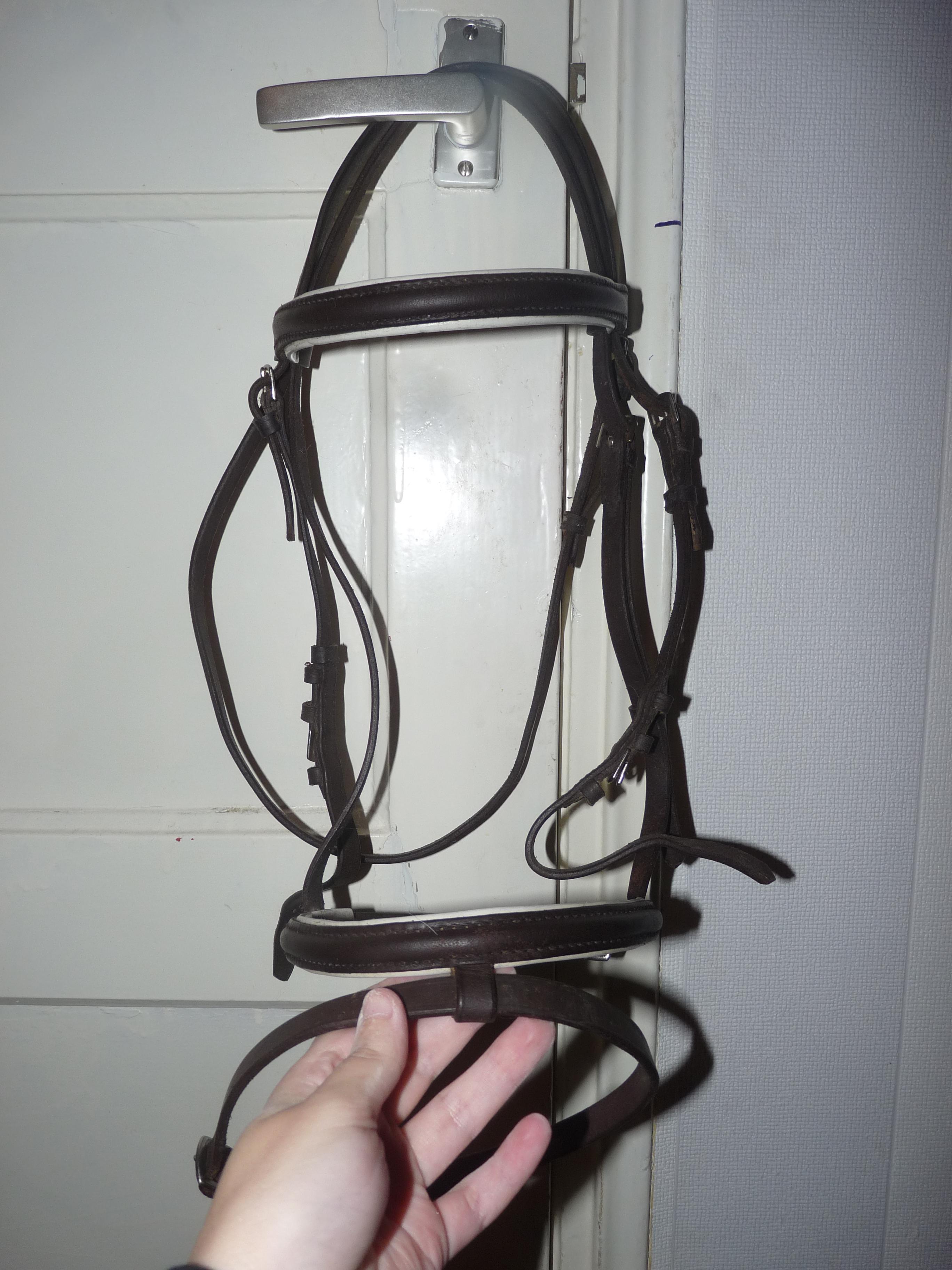 paardenspullen