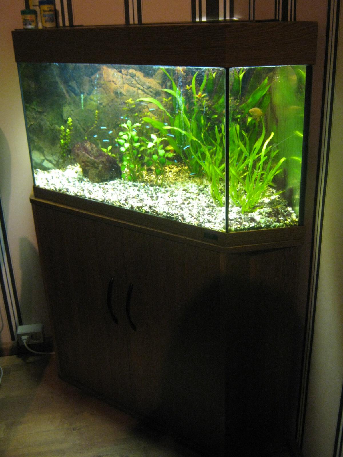 compeet juwel hoek aquarium 150 liter. Black Bedroom Furniture Sets. Home Design Ideas